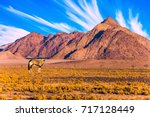 namibia  south africa. sunset... | Shutterstock . vector #717128449