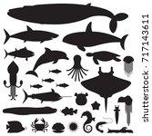 underwater animals and sea...   Shutterstock .eps vector #717143611