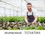 happy smiling male gardener... | Shutterstock . vector #717167341