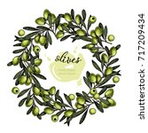 vector set of hair care... | Shutterstock .eps vector #717209434