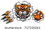 A Tiger Angry Animal Sports...