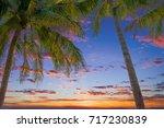 beach of the caribbean islands | Shutterstock . vector #717230839