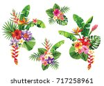 tropical summer bouquet with... | Shutterstock .eps vector #717258961