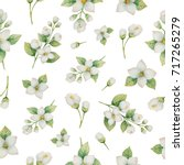watercolor seamless pattern of... | Shutterstock . vector #717265279