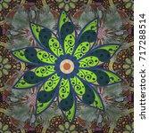 vector illustration. flowers on ... | Shutterstock .eps vector #717288514