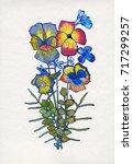botanical illustration.... | Shutterstock . vector #717299257