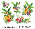 tropical summer bouquets with... | Shutterstock .eps vector #717322609