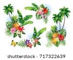 tropical summer arrangements... | Shutterstock .eps vector #717322639