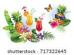 tropical summer arrangements...   Shutterstock .eps vector #717322645