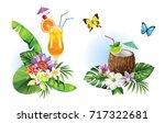 tropical summer arrangements...   Shutterstock .eps vector #717322681