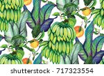 tropical background with... | Shutterstock . vector #717323554