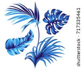 set of vector botanical graphic ... | Shutterstock .eps vector #717335461