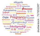 words bubble for pregnancy in... | Shutterstock .eps vector #717351397