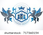 heraldic design  vector vintage ... | Shutterstock .eps vector #717360154
