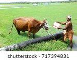 madurai   tamilnadu  south... | Shutterstock . vector #717394831
