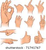vector illustration various... | Shutterstock .eps vector #71741767