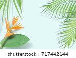 Tropical Palm Leaves Frame On...