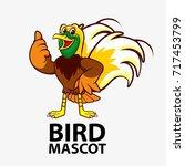 bird mascot  bird logo  bird... | Shutterstock .eps vector #717453799