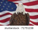Photo Of A Bald Eagle Against...