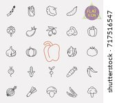 thin line vegetable vector icon ... | Shutterstock .eps vector #717516547