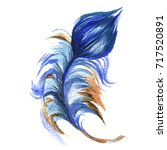 watercolor bird feather from... | Shutterstock . vector #717520891