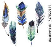 watercolor bird feather from... | Shutterstock . vector #717520894