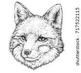 hand drawn illustration of fox. ...   Shutterstock .eps vector #717522115