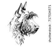 Scottish Terrier Dog. Vector...