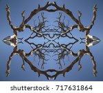Driftwood Kaleidoscope