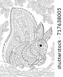 coloring page of squirrel... | Shutterstock .eps vector #717638005