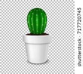 realistic decorative cactus...   Shutterstock .eps vector #717720745