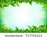 organic tea leaves backgrounds... | Shutterstock .eps vector #717752221