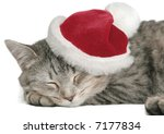 Stock photo the grey cat sleeps in a new year s cap 7177834