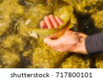 trout fishing in a mountain... | Shutterstock . vector #717800101