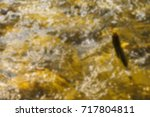 trout fishing in the mountain... | Shutterstock . vector #717804811