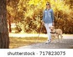 guide dog helping blind woman... | Shutterstock . vector #717823075