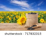 sunflower seeds in burlap sack  ...   Shutterstock . vector #717832315