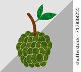 sugar apple on gary background  ... | Shutterstock . vector #717838255