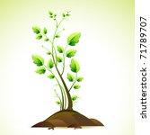 Illustration Of Growing Green...