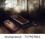 dark forest with an old wooden... | Shutterstock . vector #717907861