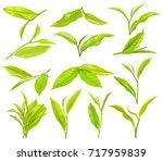 Tea Leaf Isolated On The White...