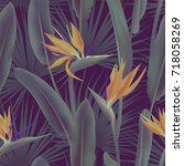 palm leaves and strelitzia...   Shutterstock .eps vector #718058269