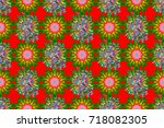 seamless pattern with floral...   Shutterstock . vector #718082305