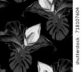 hand painted isolated botanical ... | Shutterstock . vector #718107604