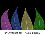 dry leaf detail texture   Shutterstock . vector #718115089