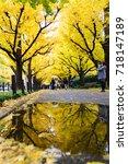 tokyo  japan   november 19 ... | Shutterstock . vector #718147189