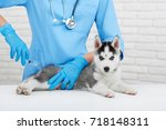 view of professional... | Shutterstock . vector #718148311