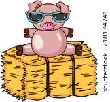 Cute Pig With Sunglasses On...