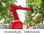 Small photo of agritech technology concept, robot use in smart farming or agriculture for aim of improving yield, efficiency, and profitability.it can be products, services or improve various input/output processes.