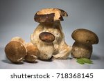 fresh healthy happy family of... | Shutterstock . vector #718368145